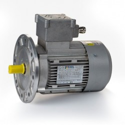 Motor eléctrico trifásico ATEX antiexplosivos, carcasa aluminio, 0.18kW/0.25CV, 3000 rpm, 63B5 (ØEje motor 11 mm, ØBrida 140 mm) 220/380V, IP66 IE1, Zona 21
