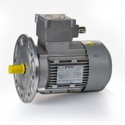 Motor eléctrico trifásico ATEX antiexplosivos, carcasa aluminio, 1.1kW/1.5CV, 3000 rpm, 80B5 (ØEje motor 19 mm, ØBrida 200 mm) 220/380V, IP66 IE1, Zona 21