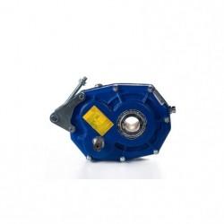 Reductor pendular RP 125 Rel.1/20, eje hueco Ø55, eje polea Ø28, con tensor y antirretorno