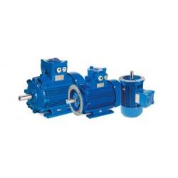 Motor eléctrico trifásico ATEX antideflagrante, carcasa fundición, 0.12kW/0.17CV, 1500 rpm, 63B14 (ØEje motor 11 mm, ØBrida 90 mm) 220/380V, IP66, IE1, ZONA 21